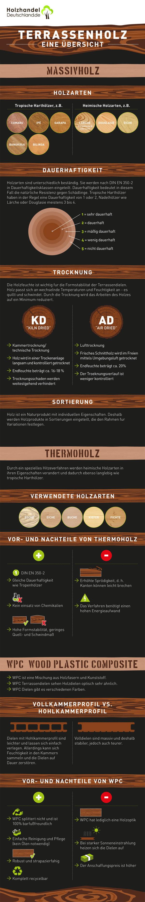 Übersicht Terrassenhölzer (Infografik)