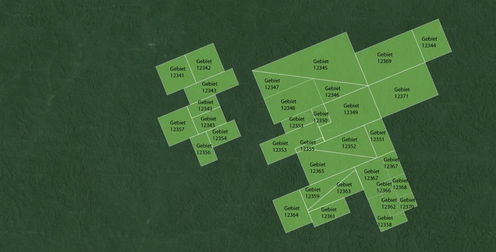 Der Staat vergibt eine Wald-Konzession an einen Wald-Besitzer und Lieferanten/Holzproduzenten.