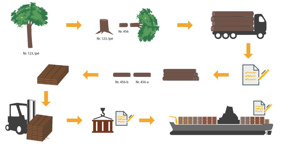 Der Transport der gefällten Bäume zum Sägewerk wird genau dokumentiert, so dass sich das Holz bis zum Baumstumpf zurückverfolgen lässt.