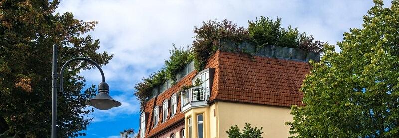 Dachterrasse mit Dachgarten